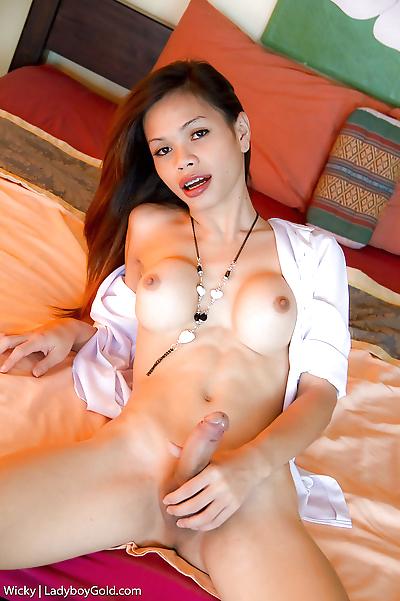 Petite young Asian ladyboy..